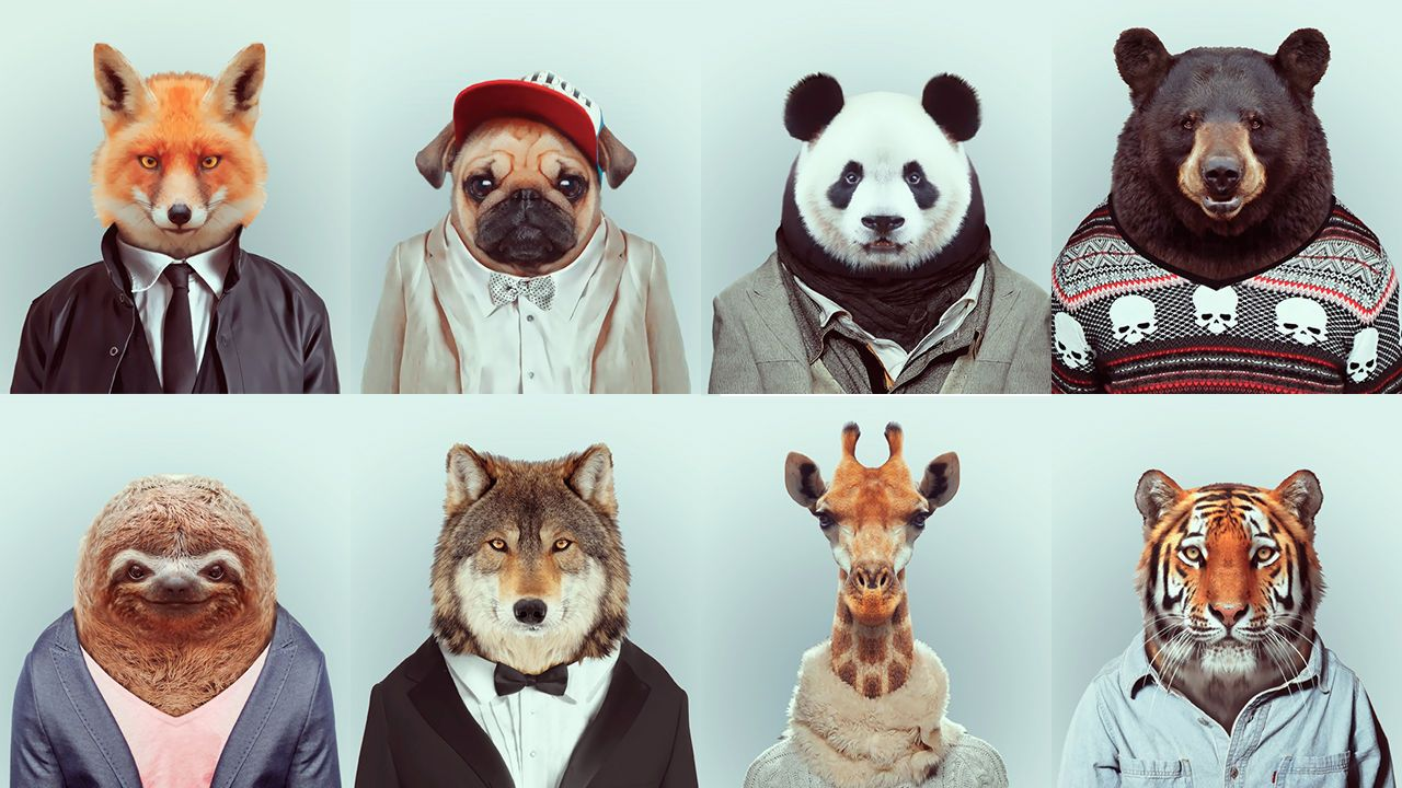 animals wearing clothes speakingwriting prompts