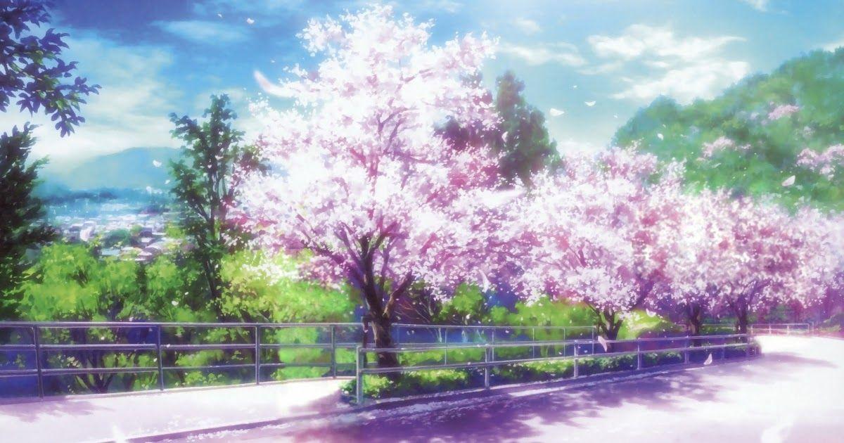 Anime Nature Desktop Wallpaper Anime Cherry Blossom Desktop Wallpaper Pixelstalk Net Lo Fi Anime Anime Cherry Blossom Cherry Blossom Wallpaper Anime Scenery