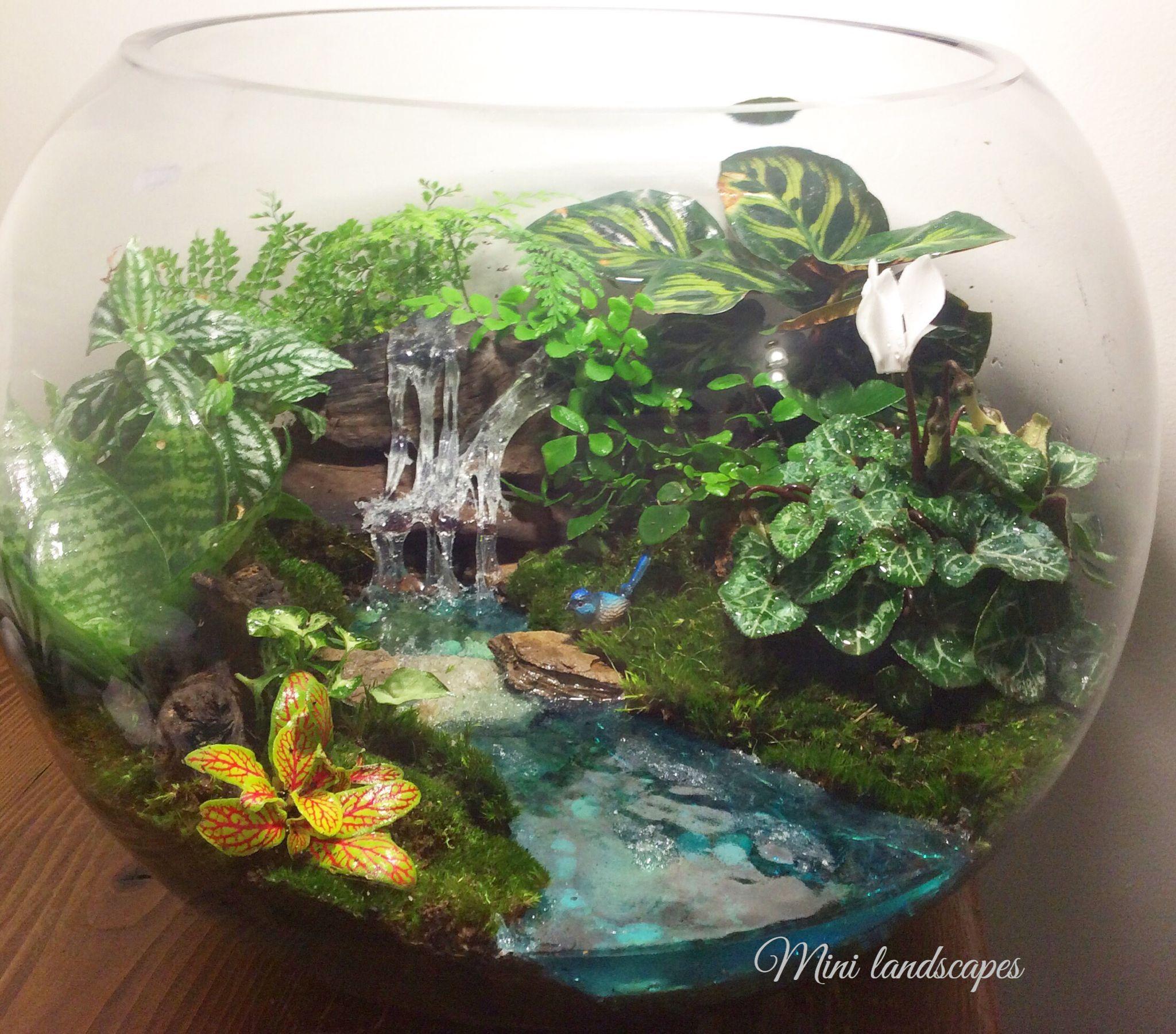 Huge Resin Waterfeature Open Bowl Terrarium Aviaries Ideas