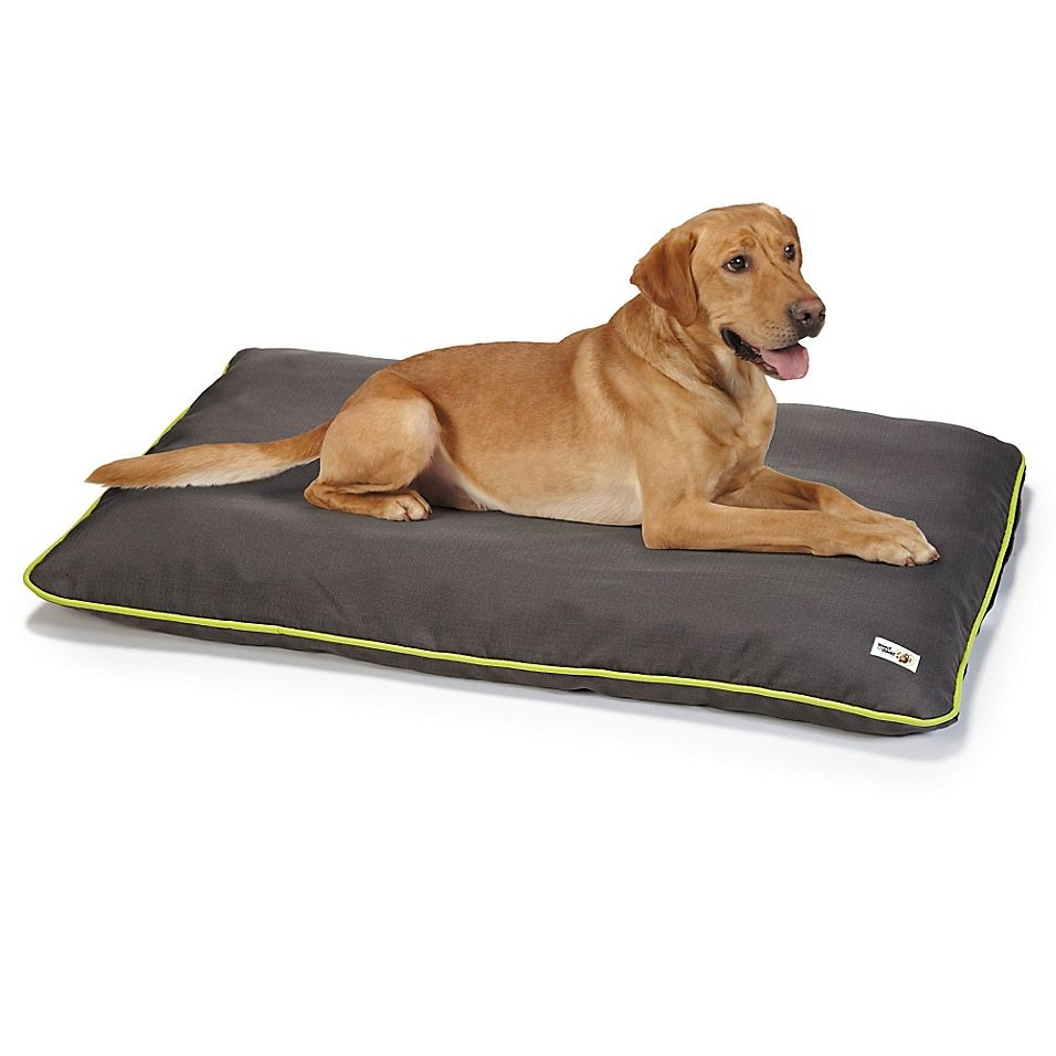 Insect Shield Small Crate Pad In Grey Dogs Cool Dog Beds Dog Bed