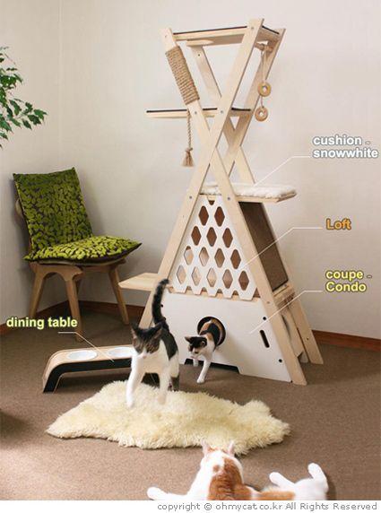 Trillo für Katzen als Ihre Familie  #diyforpets #familie #katzen #trillo
