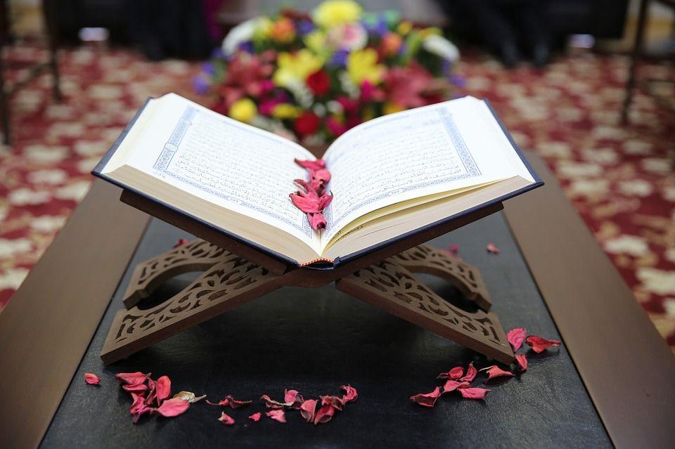 صور مصاحف Korans اجمل خلفيات مصاحف روعه Quran Learn Quran Holy Quran