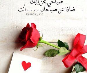 صباح الخير أجمل الصور لكل صباح مداد الجليد Love Words Morning Love Quotes Good Morning My Love