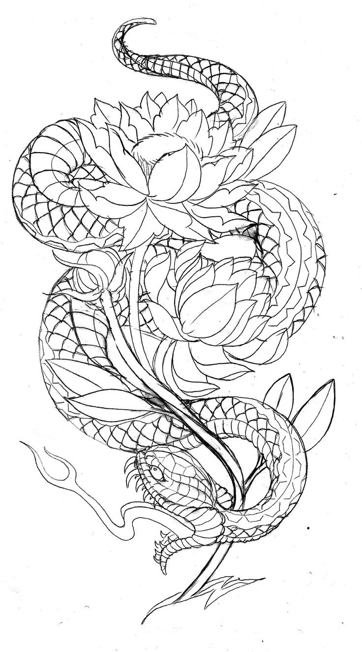 Japanese Tattoo Line Drawing : Japanese snake tattoo designs print