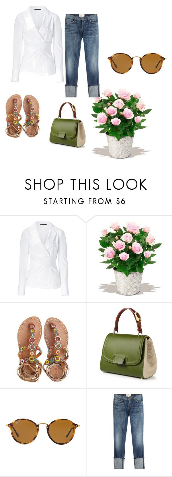 """""""Untitled #13"""" by trendsetter-789 on Polyvore featuring Donna Karan, PLANT, Laidback London, Silvana, Ray-Ban and Current/Elliott"""