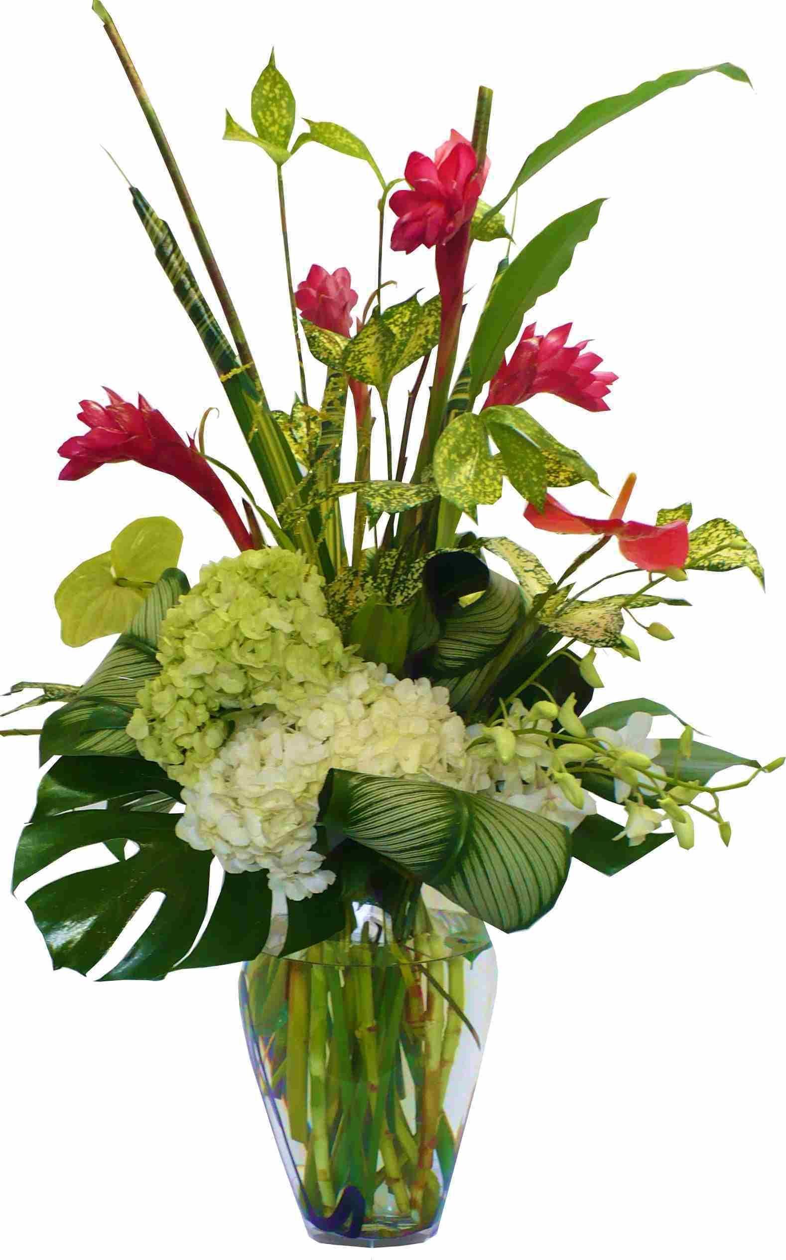 Image Result For Ginger Flower Arrangement Pictures Ginger Flower Flower Arrangements Flowers