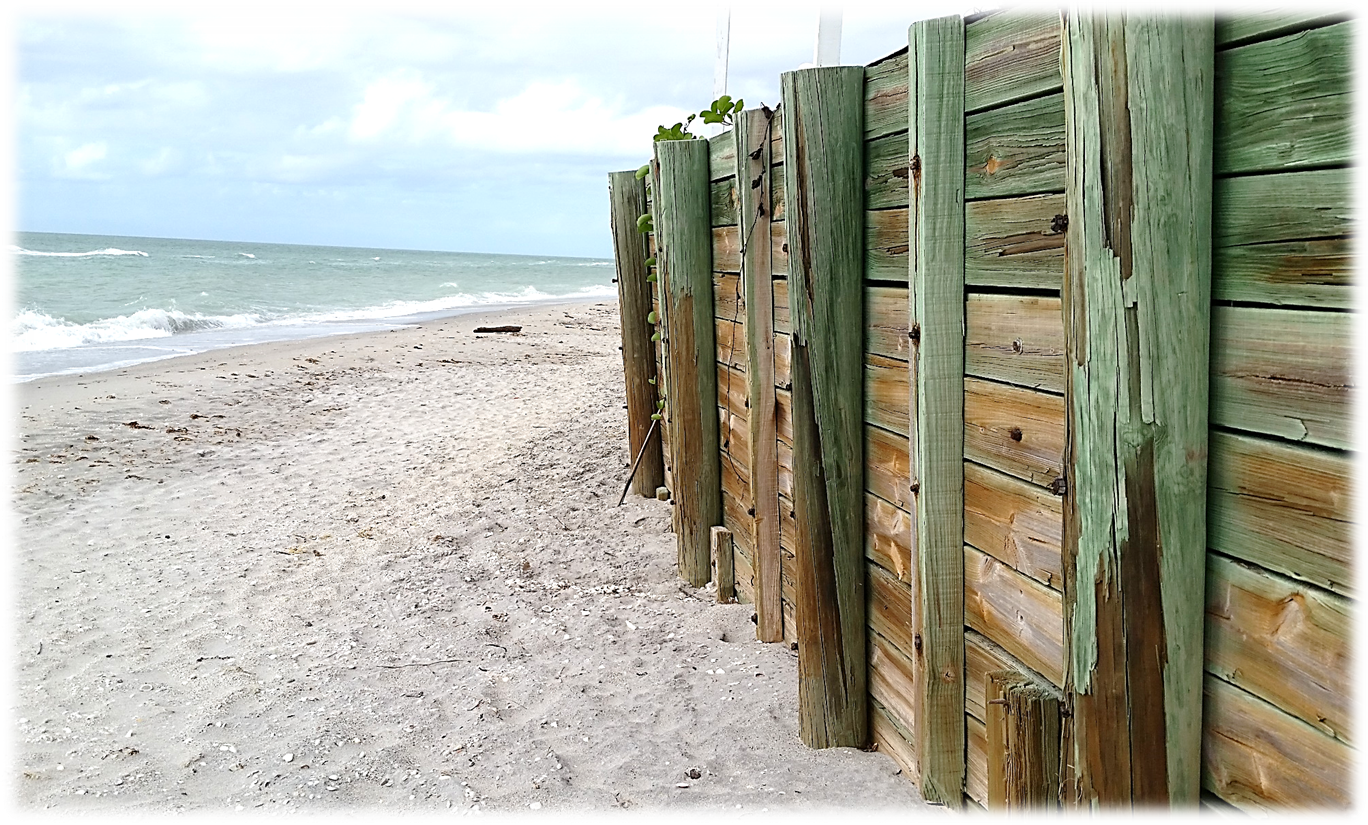 Come find your Old Florida Beach at The Pearl Beach Inn on ...