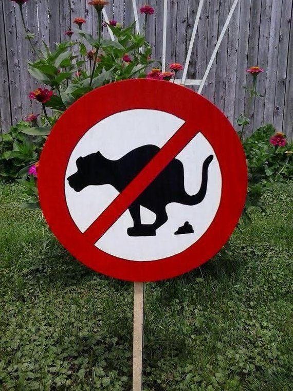 Pin On Dog Signs