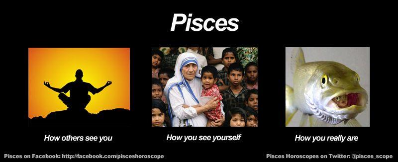 Funny Pisces Meme With Images Zodiac Memes