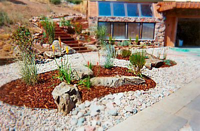 1000+ images about Landscaping - Desert Xeriscape on Pinterest ...