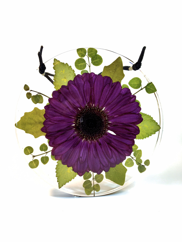 Preserved Purple Gerbera Daisy Flower Resin Decor In 2020 Gerbera Daisy Flower Decorations Daisy Flower