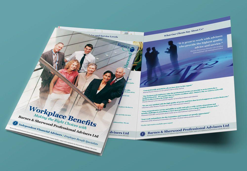financial advice brochures and inserts design lunatrix design
