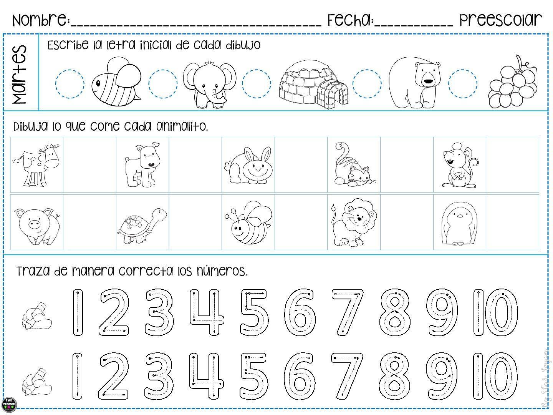 15 fichas con tareas para vacaciones para infantil star leyva -Orientacion  Andujar | Pensamiento matemático preescolar, Evaluaciones para preescolar,  Preescolar