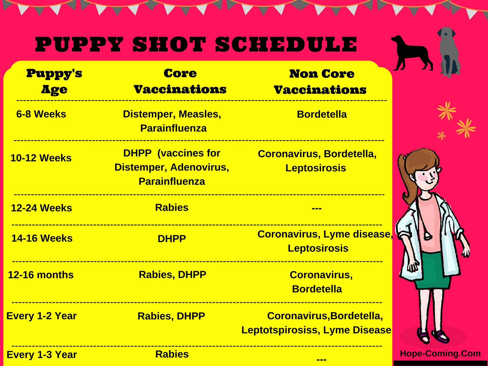 What vaccinations do puppies