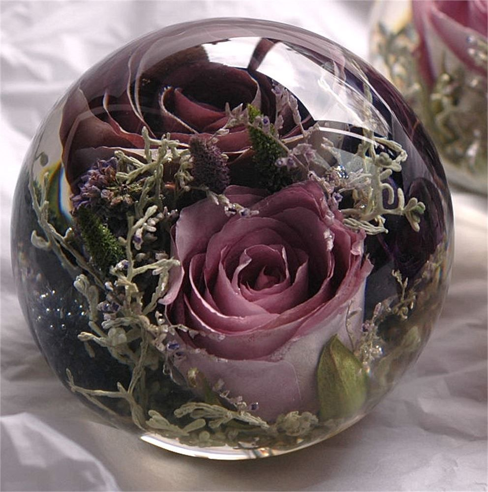 The Flower Preservation How to preserve flowers