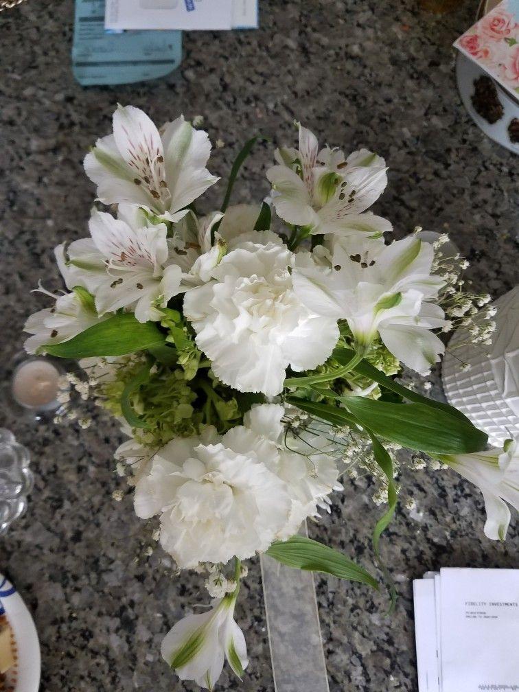 Pin by Karen Lucas on Wedding Vegetables, Plants, Wedding