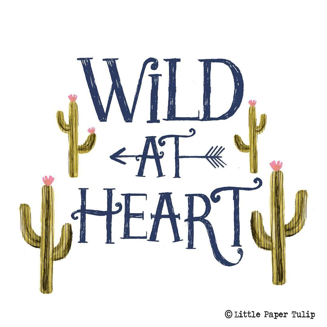 Arrow Quotes Life Beauteous Pinkendra Crockett On Quotes  Pinterest  Type Art Cacti And