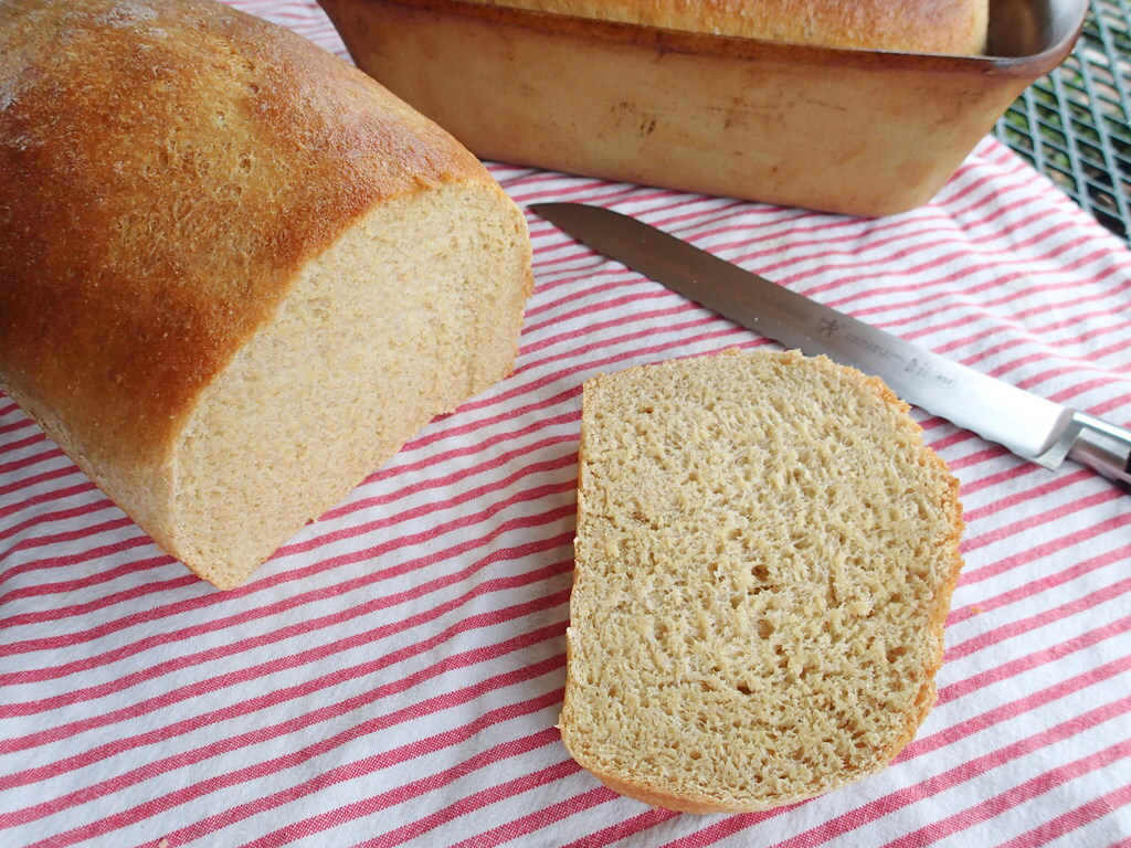 High Altitude Whole Wheat Bread   Recipe (With images ...