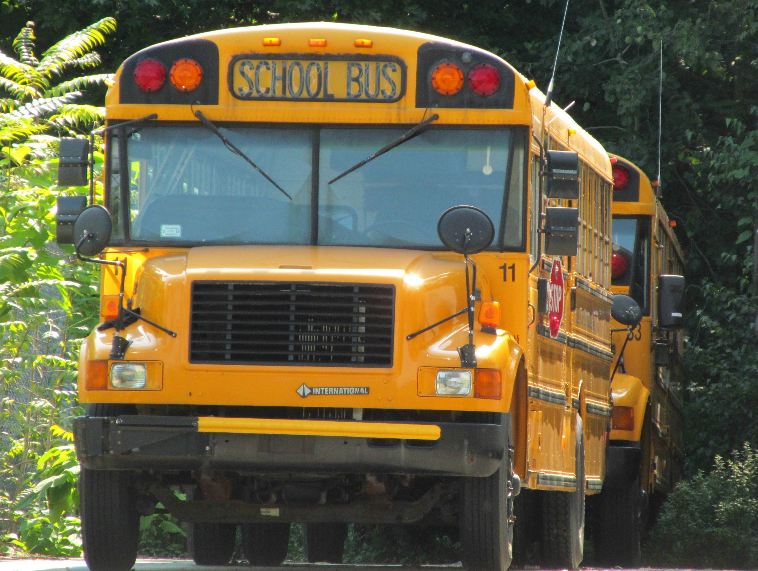 Former Mid State Bus Service 11 Vehicles School