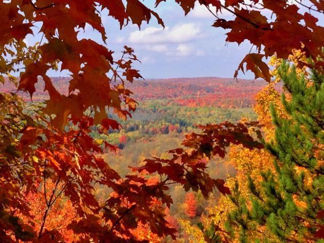 Fall Color Jordan River Valley Mi Usa Michigan Life Michigan Travel Michigan Made Products State Of Michigan