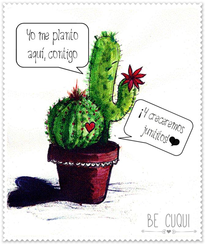 yo me planto aquí, contigo – be cuqui | Frases de cactus, Cactus y suculentas, Suculentas colgantes