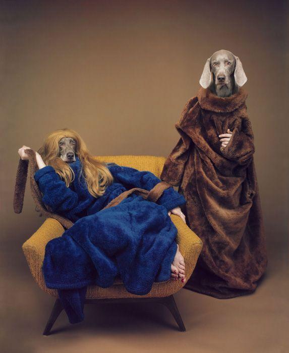 William Wegman : Fashion Photographs: Ingrid Sisch, William 5