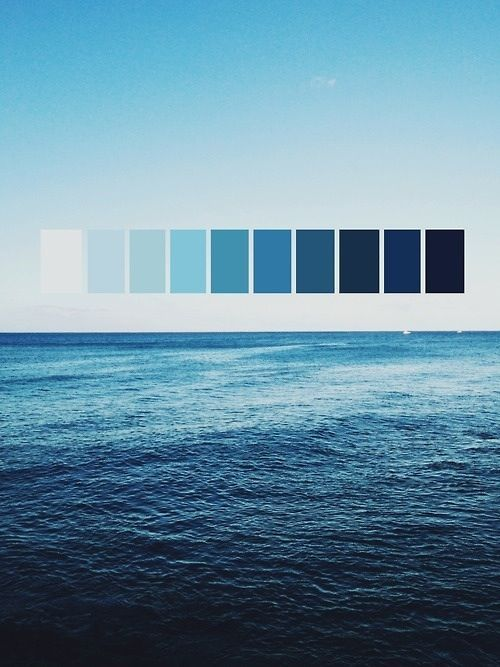 shows the cool of the ocean translated into a colour pallet. this palette  demonstrates how cool colours can vary from white too deep dark blue.