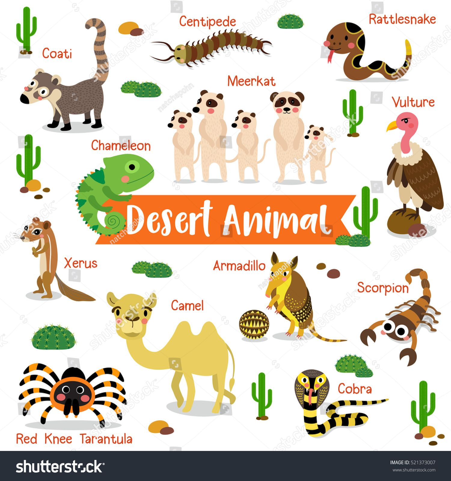 Desert Creature Cartoon On White Background Stock Vector Royalty Free 521373007 Desert Animals Animal Icon Design Cartoon Animals