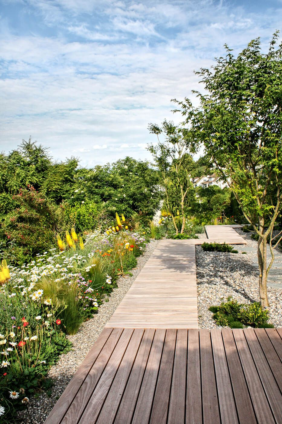 mischbepflanzung und weg aus holz in einem kleinen privatgarten