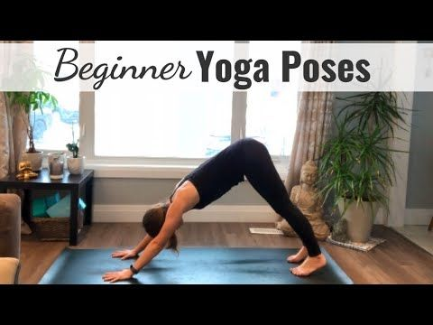 yoga poses you should do daily  youtube in 2020  yoga