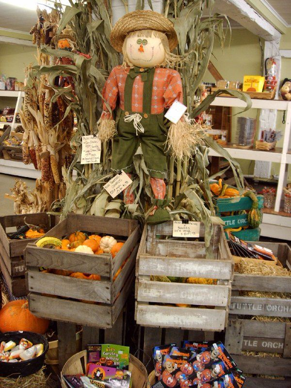 Scarecrow Autumn Pinterest Scarecrows and Halloween ideas - natural halloween decorations