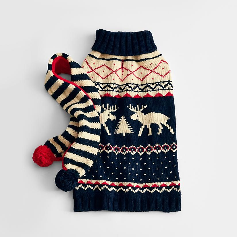 Moose fairisle dog sweater + scarf set. Not that Freckles will ...