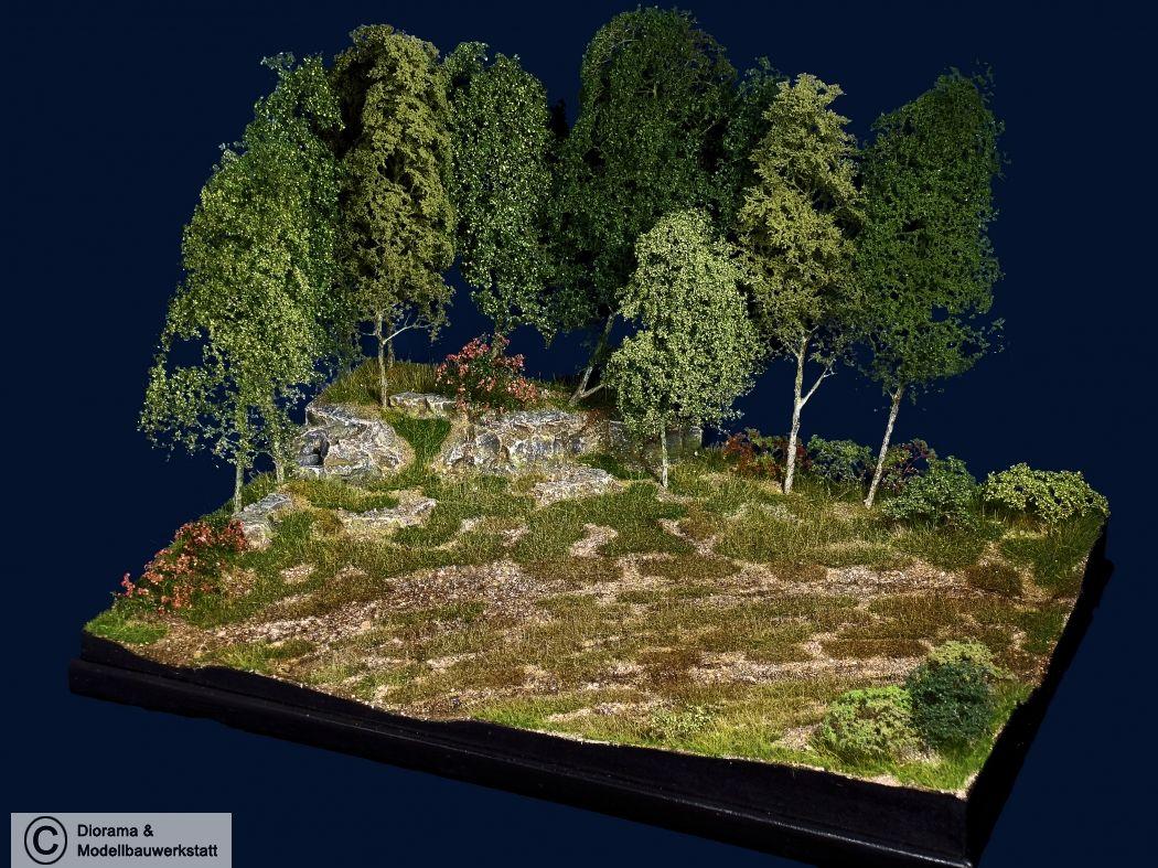 Diorama Grundplatte 66/2, Wiese am Waldrand, 42x30 cm, 1:35 - Diorama Shop Weiß - Diorama und Modellbau Werkstatt