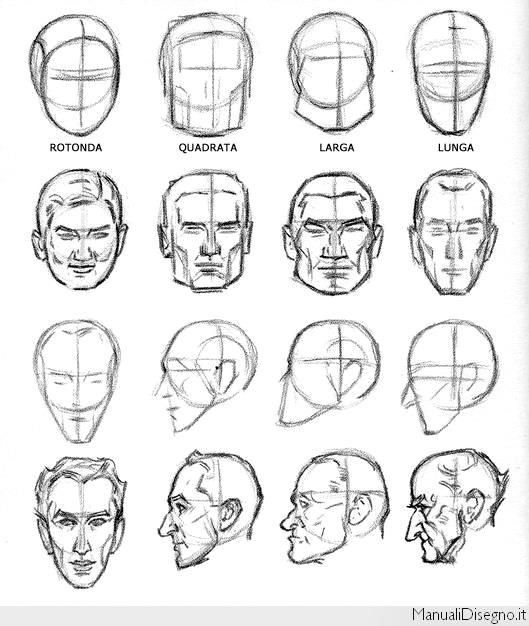 Face Shapes Male Face Drawing Drawing Heads Guy Drawing
