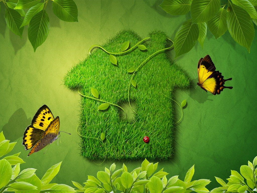 Wallpaper Nature Beauty Green Background 1 HD Wallpapers