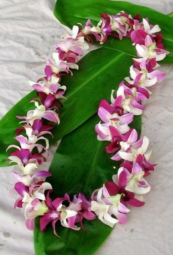 Happiness is getting lei'd in Hawaii