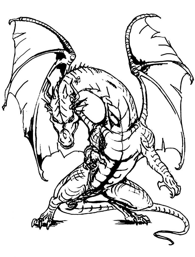 Dragon Coloring Pages For Adults Dragon Coloring Page Adult