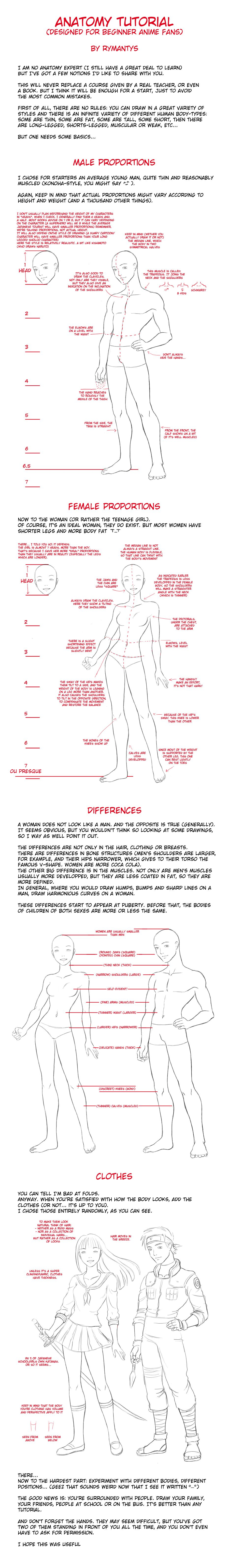 Anatomy tutorial for beginners by ~RyMantys   Future Drawing Lessons ...