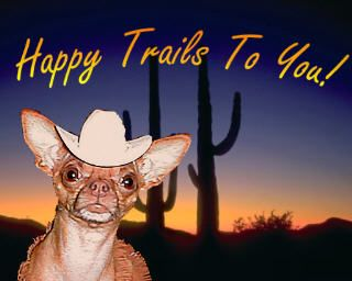 Image result for cat  happy trails to you meme