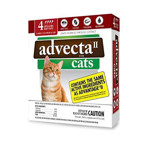 Advecta Ii Flea Treatment For Cats Over 9 Lbs 4 Month Supply Http Ift Tt 2kp5xqq Cat Fleas Flea Prevention For Cats Flea Treatment