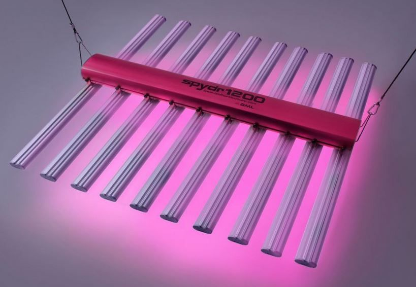 Bml Horticulture Spydr 1200 Led Grow Light Review