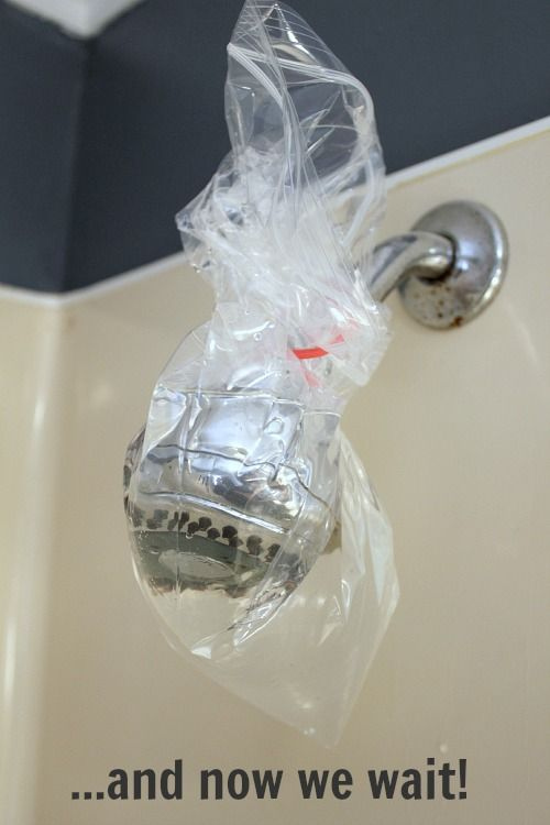 how to unclog a shower head water how to clean descale and unclog your shower head naturally the creek line house