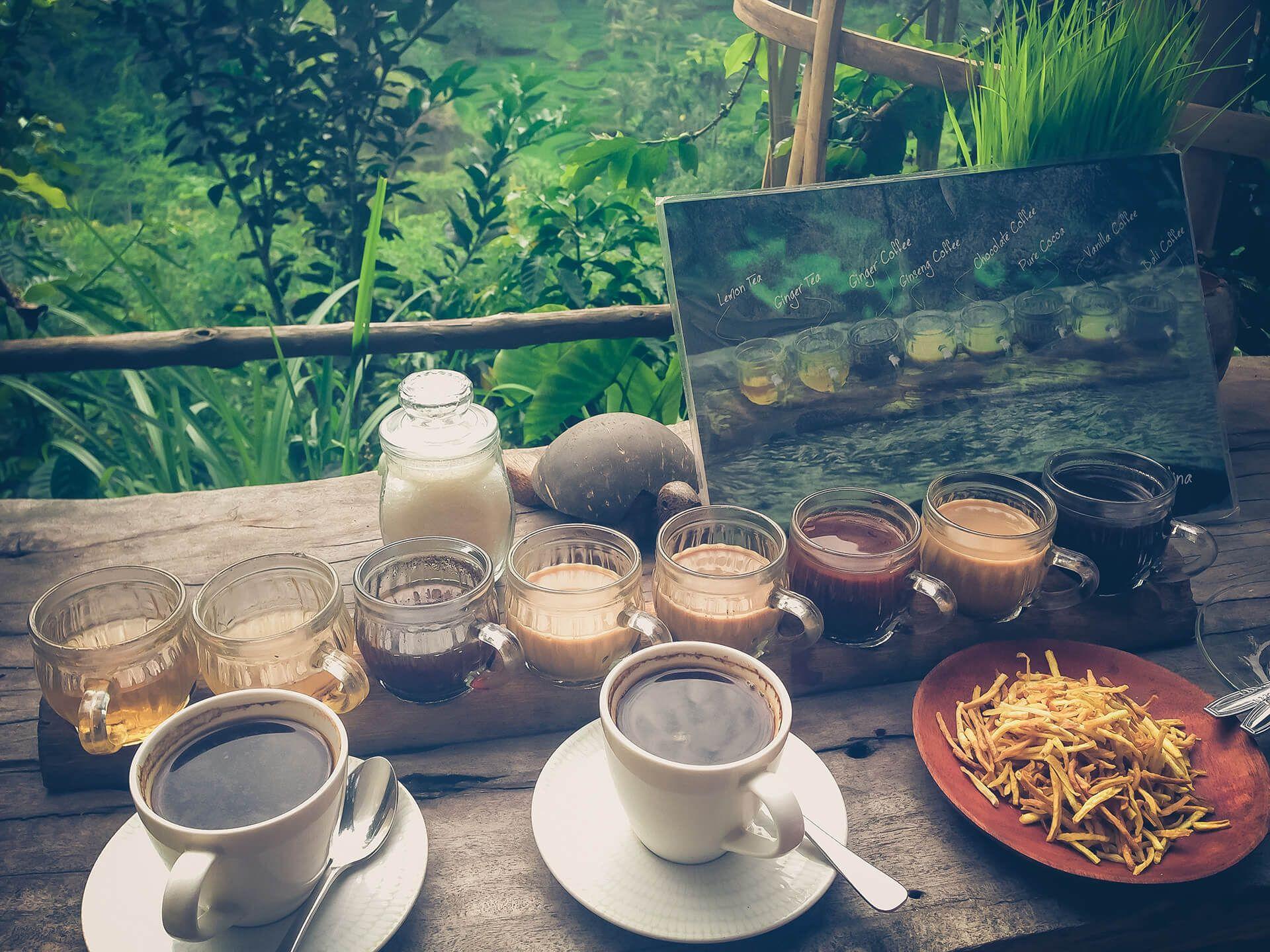 Luwak coffee farm in Ubud, Bali Bali, Coffee farm, Ubud