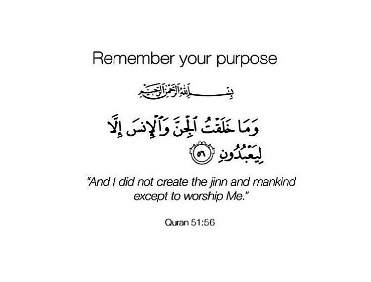 Pin By Sam S On Islam Quran Quotes Quran Quotes Inspirational Quran