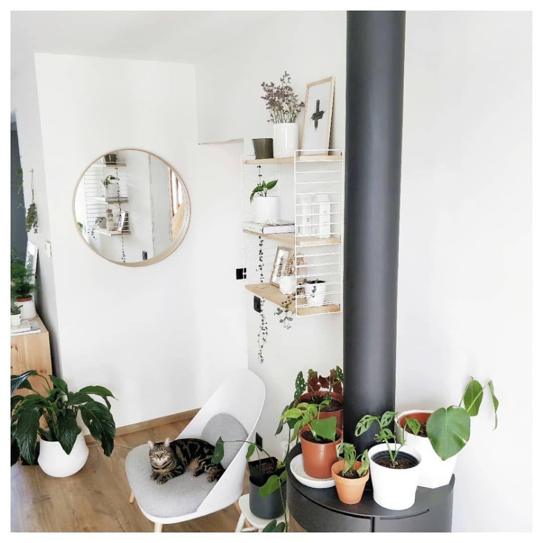 Blokker Inspireer Ons Met Jouw Blokker Interieur Blokker Ladder Decor Thuisdecoratie Interieur
