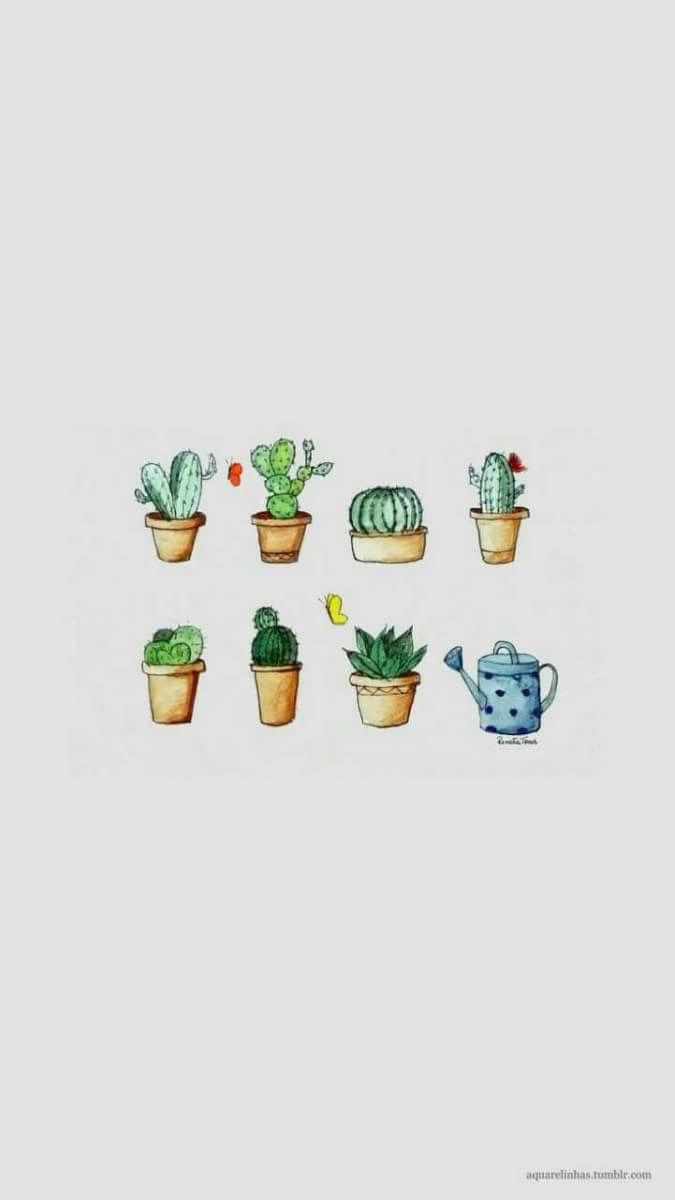 Pin Oleh Bạch Nguyệt Phương Di Cactus Lockscreens Lukisan Kaktus Kertas Dinding Wallpaper Ponsel