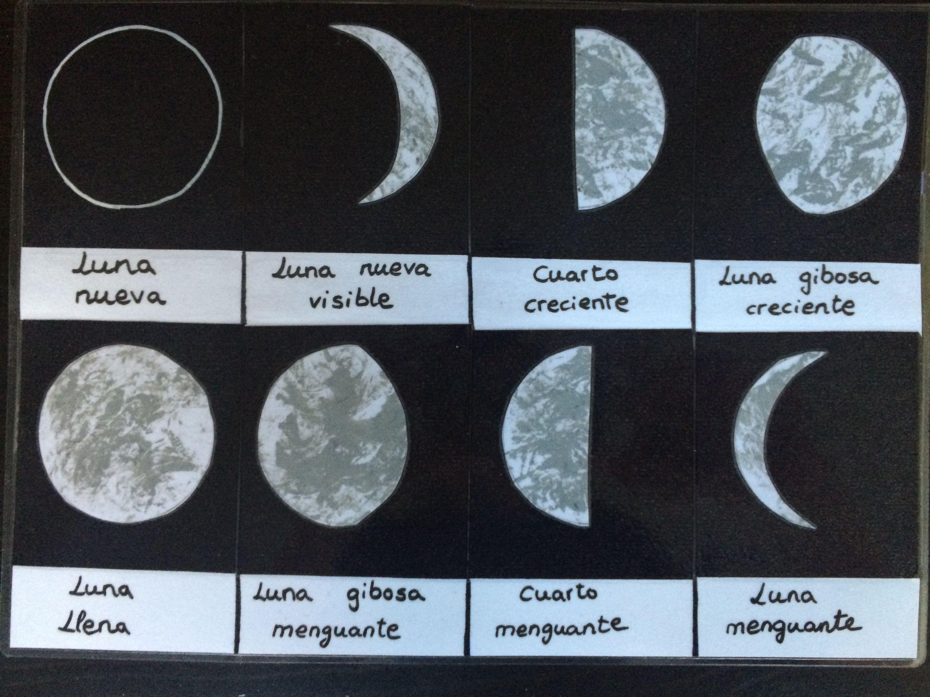 Dibujar La Fase De La Luna Buscar Con Google Con Imagenes