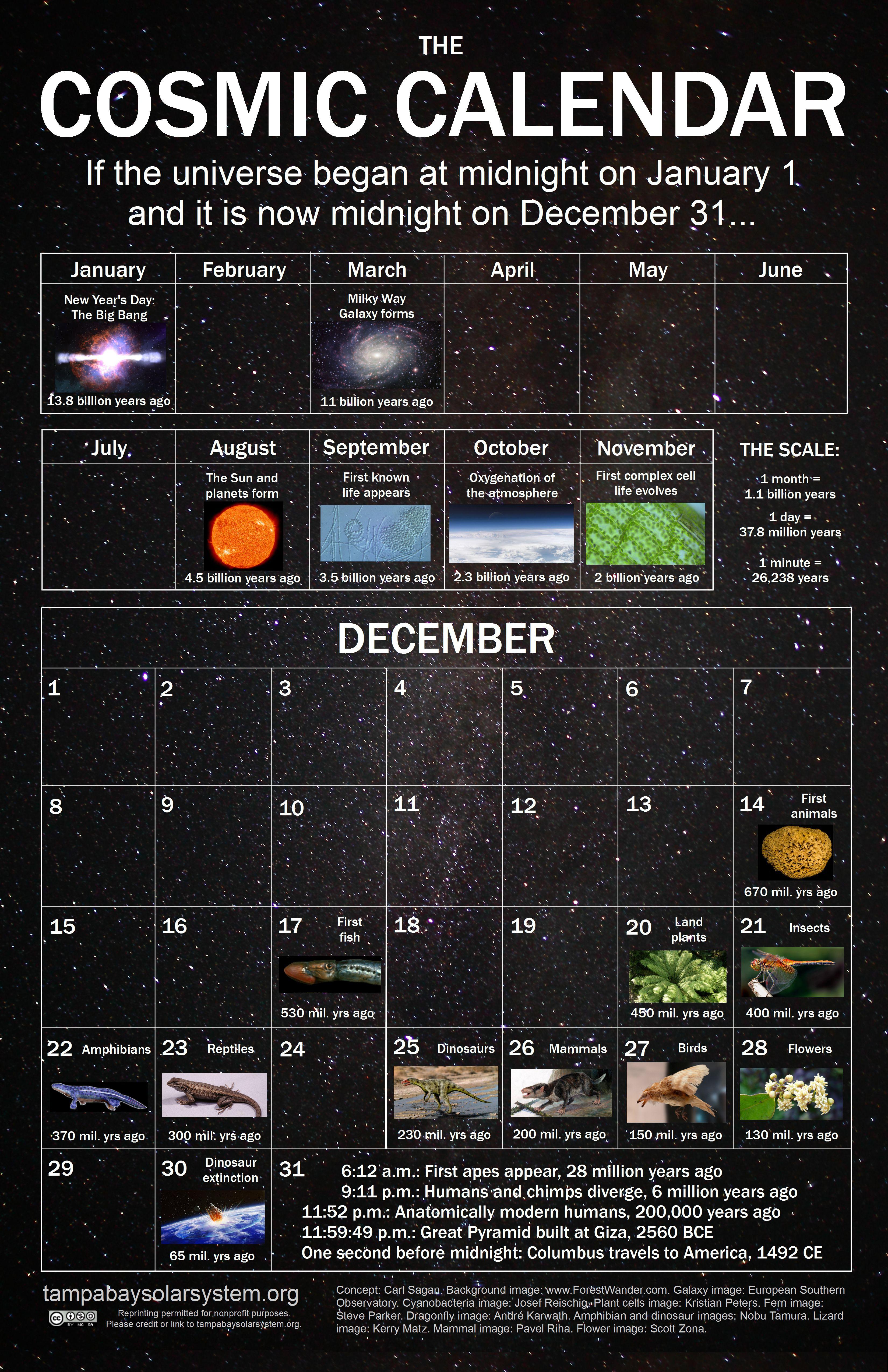 Cosmic Calendar Cosmic Calendar Cosmic Calendar