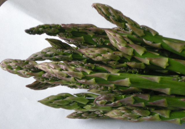 Asparagus-The Unlikely Birth Control?