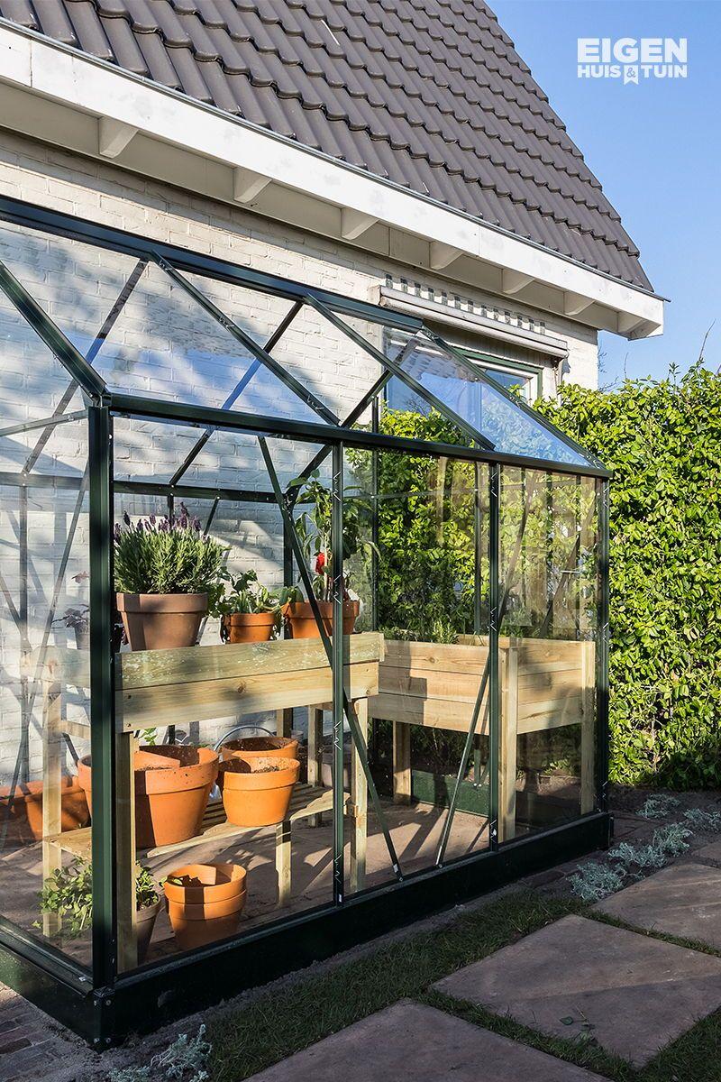 Met Een Kas In De Tuin Heb Je Nooit Gefaalde Oogst A Greenhouse In The Garden Means No Failed Harvest Anymore Greenhouse Kas Tuin Huis En Tuin Tuin Ideeën